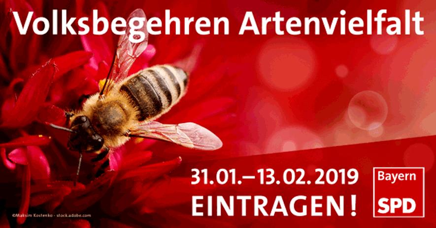 """Bienen Volksbegehren: Filmveranstaltung Zum Volksbegehren """"Rettet Die Bienen"""